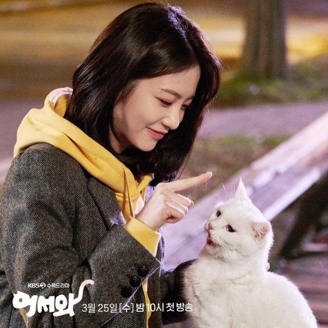 Meow, the Secret Boy ăn điểm fan Kpop vì đem fanfic mèo hóa người ra đời thực, thêm cả combo mỹ nam cực phẩm đóng chính? - ảnh 4