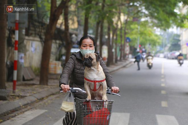 Ngắm nhịp sống trầm lặng trên những con phố siêu ngắn ở Hà Nội mùa dịch Covid -19 - ảnh 2