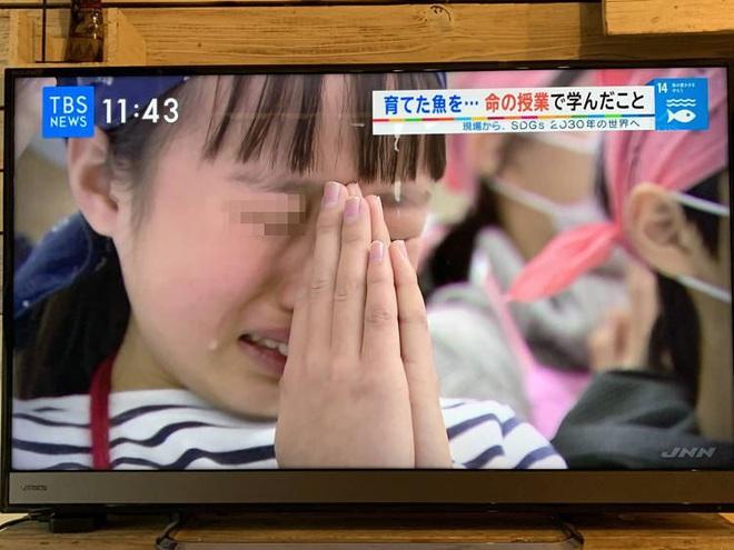 Lớp học ở Nhật gây phẫn nộ vì bắt học sinh giết mổ và ăn thịt con vật do chính tay mình nuôi - ảnh 1