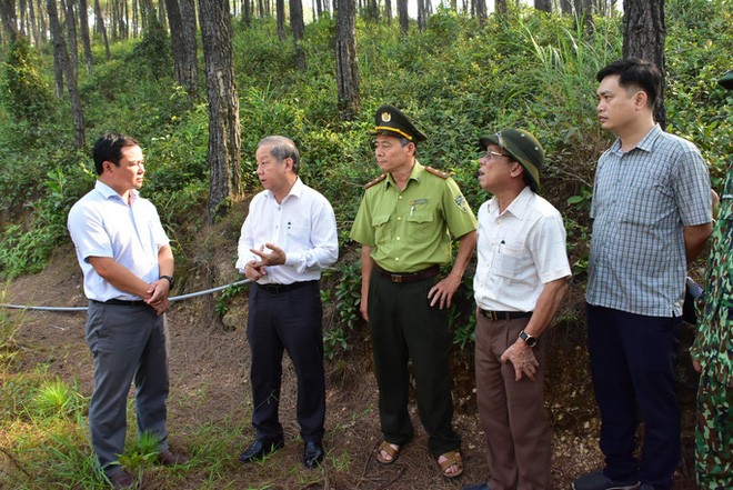 Miền Trung - Tây Nguyên: Nguy cơ cháy rừng rất cao - ảnh 2