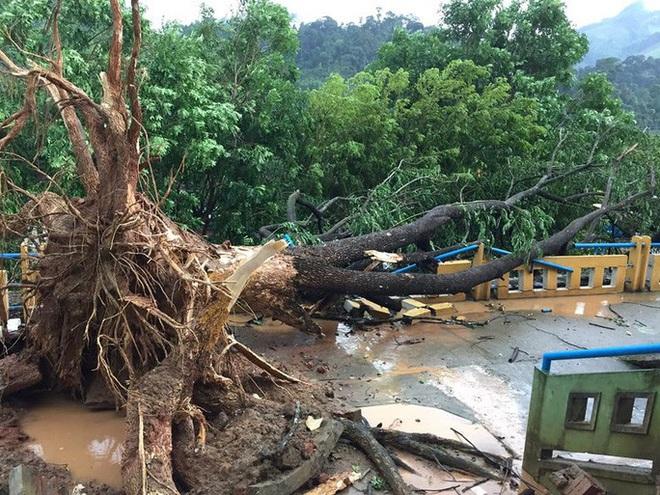 Quảng Nam: Mưa dông kèm lốc xoáy khiến nhiều nhà dân bị tốc mái - ảnh 1