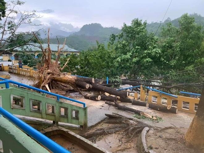 Quảng Nam: Mưa dông kèm lốc xoáy khiến nhiều nhà dân bị tốc mái - ảnh 2