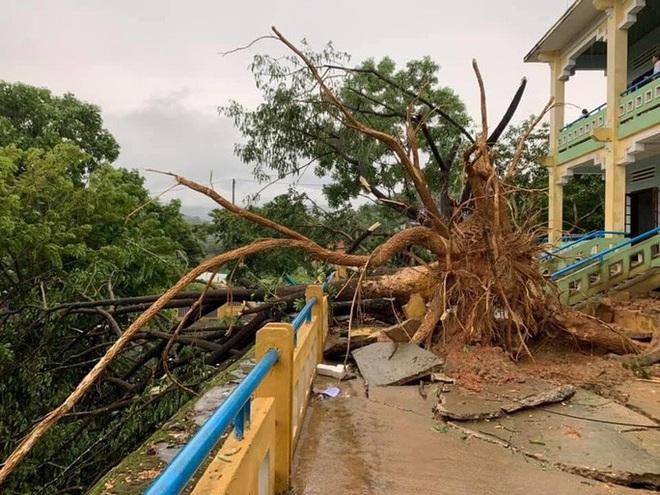 Quảng Nam: Mưa dông kèm lốc xoáy khiến nhiều nhà dân bị tốc mái - ảnh 3