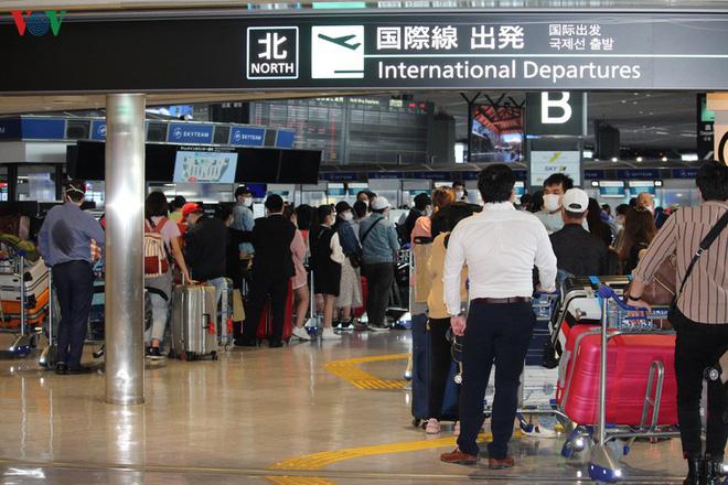 Đưa hơn 300 công dân Việt Nam từ Nhật Bản về nước - ảnh 2