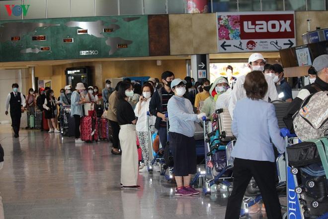 Đưa hơn 300 công dân Việt Nam từ Nhật Bản về nước - ảnh 1