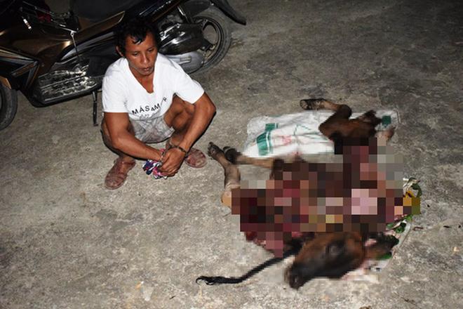 Quảng Bình: Túng tiền, thanh niên sang nhà hàng xóm bắt trộm bò xẻ thịt đem bán - ảnh 1
