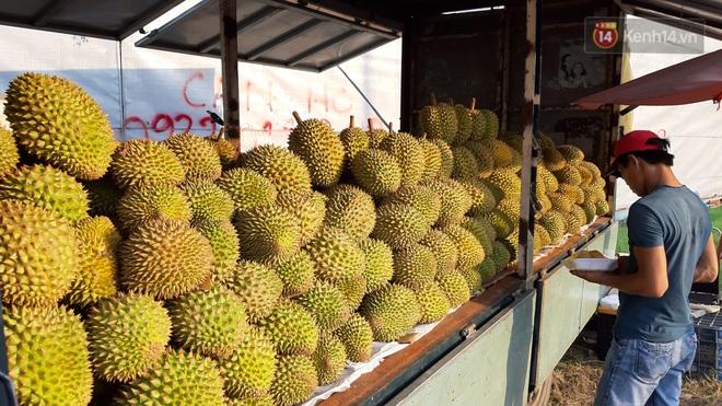 Sầu riêng bao ăn chất đống khắp vỉa hè Sài Gòn với giá siêu rẻ chỉ 50.000 đồng/kg: Gặp hạn mặn nên bán được đồng nào hay đồng đó! - ảnh 11