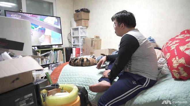 Quả bom nổ chậm tại Hàn Quốc: Lý do gì khiến đến hơn 800 người muốn nhảy cầu tự sát chỉ trong vòng 4 năm? - ảnh 1