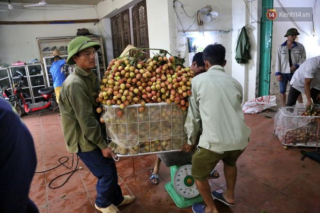 """Người dân Bắc Giang tấp nập đi bán vải thiều chín mọng: """"Chăm sóc cả năm chỉ chờ ngày này - Ảnh 9."""