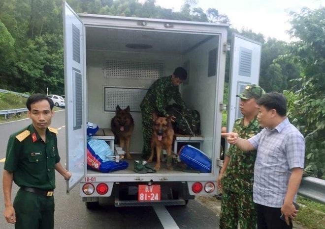 Hàng trăm chiến sỹ cùng chó nghiệp vụ xuyên đêm truy bắt tên sát nhân vượt ngục đang trốn trên đèo Hải Vân - ảnh 8