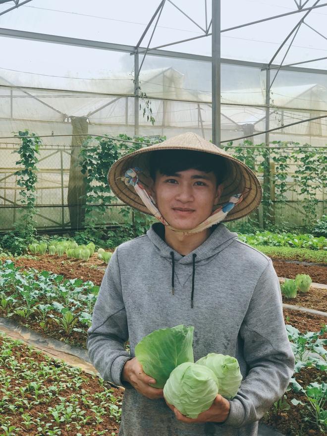 Cử nhân Luật bỏ thành phố lên Đà Lạt trồng rau, bị cha mẹ phản đối nhưng 1 năm sau nhận lại thành quả bất ngờ - ảnh 4
