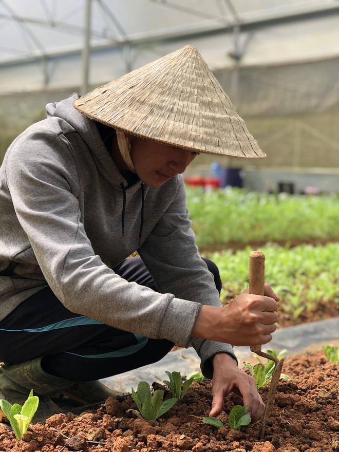 Cử nhân Luật bỏ thành phố lên Đà Lạt trồng rau, bị cha mẹ phản đối nhưng 1 năm sau nhận lại thành quả bất ngờ - ảnh 1