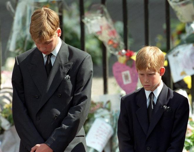 Hé lộ cuộc gọi cuối cùng với con trai của Công nương Diana trước khi ra đi, điều khiến hai vị Hoàng tử nuối tiếc suốt cuộc đời - ảnh 1