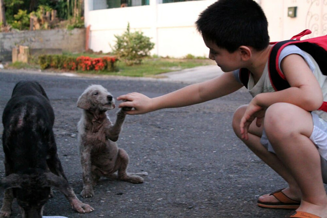Con trai ngày nào cũng biến mất khỏi nhà, ông bố tò mò theo dõi con thì phát hiện việc làm xúc động của cậu bé - Ảnh 1.