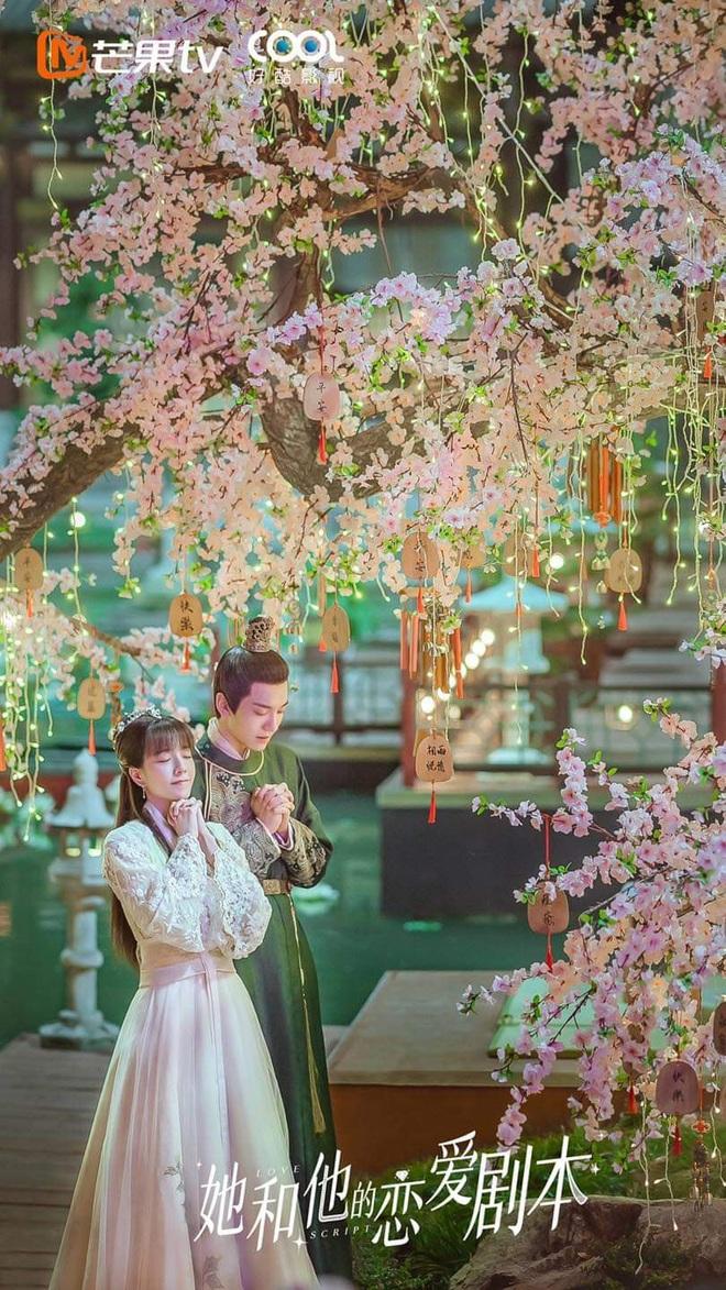 Mới ngày nào là quận chúa Chẩm Thượng Thư nay Trang Đạt Phi lại bị tổng tài mê sảng hành tơi tả ở phim mới - ảnh 1
