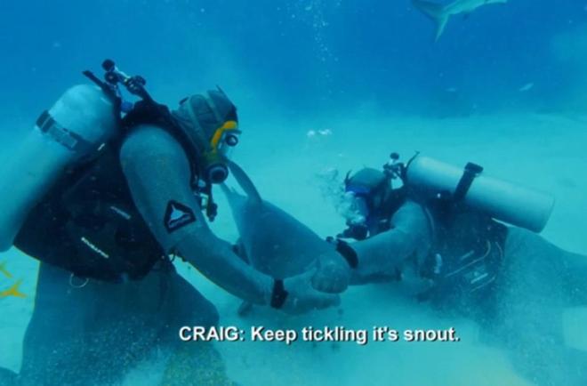 Tay đấm thép Mike Tyson hạ đo ván cá mập trong trận đấu diễn ra dưới đáy biển, thừa nhận: Tôi đã sợ hết hồn - ảnh 4