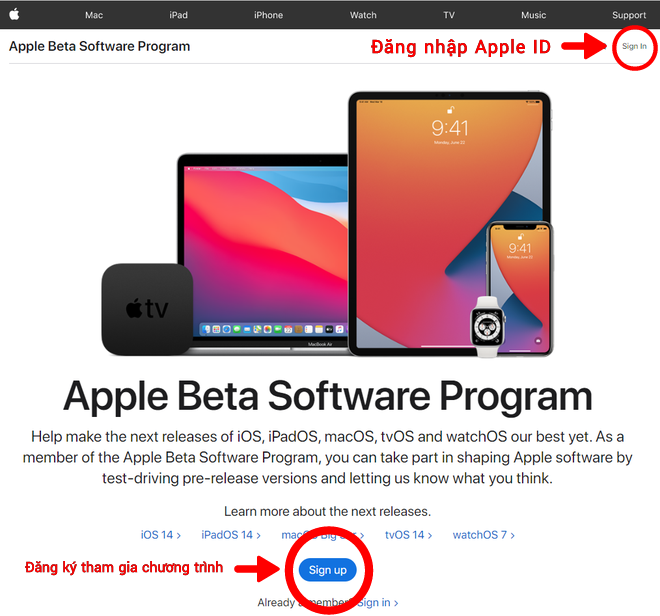 Hướng dẫn cập nhật phiên bản watchOS 7 Public beta mới nhất cho Apple Watch - ảnh 3
