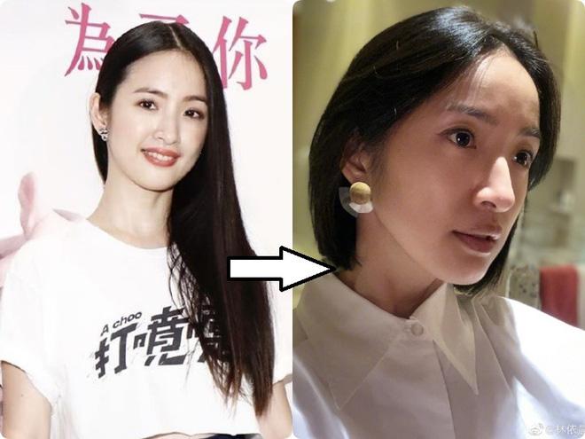 4 người đẹp Hoa Ngữ ngấp nghé 40 mới xuống tóc nhưng cái kết lại cực kỳ mãn nhãn - ảnh 2