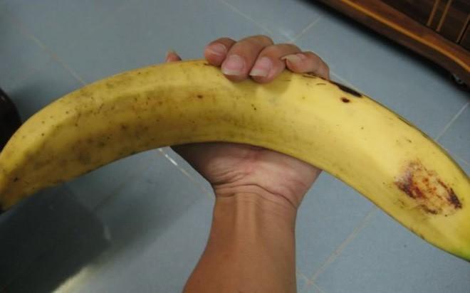 """Ngỡ ngàng trước giống chuối """"siêu to khổng lồ"""" đặc biệt tại Việt Nam, mỗi quả nặng gần 1kg giá chỉ 9.000 đồng/quả - Ảnh 4."""