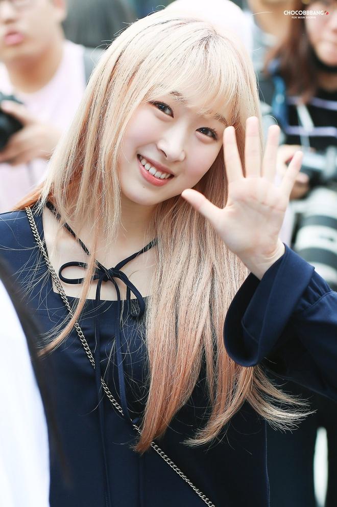 5 nữ idol dành cả thanh xuân để thực tập: 2 thành viên của Cosmic Girls lẫn thành viên hụt của BLACKPINK cũng không dài bằng Jihyo (TWICE) - ảnh 3