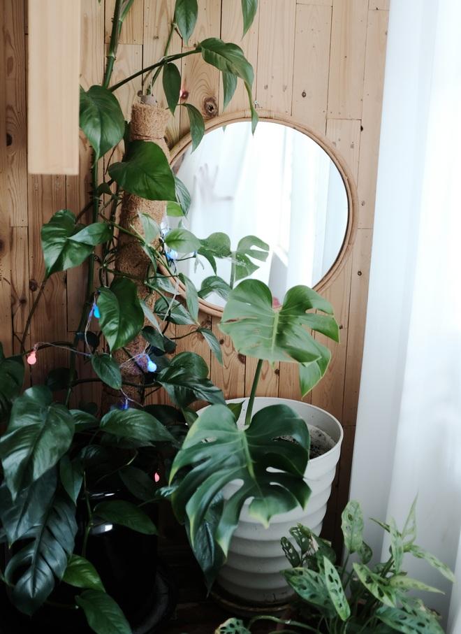 """Cô nàng bê nguyên khu vườn vào phòng, góc nào cũng xinh khiến hội """"sống ảo"""" mê tít - Ảnh 4."""