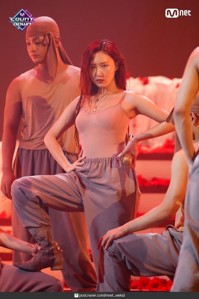 Chỉ vì chiếc quần của Hwasa, netizen Việt - Hàn lại được dịp đấu khẩu tóe lửa: Người bênh chằm chặp kẻ chê hết lời - ảnh 2