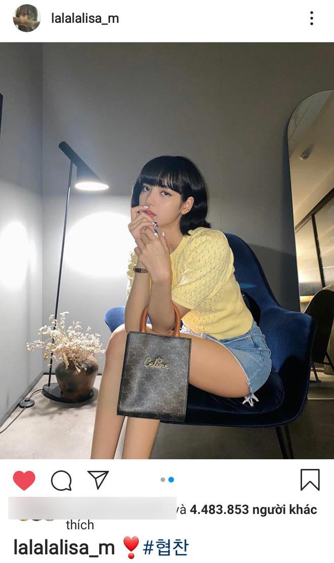 """Giữa ồn ào sao Hàn """"ăn gạch"""" vì chiêu trò quảng cáo, Lisa (BLACKPINK) chứng tỏ EQ cao ngất chỉ với vài bức ảnh sống ảo - Ảnh 5."""