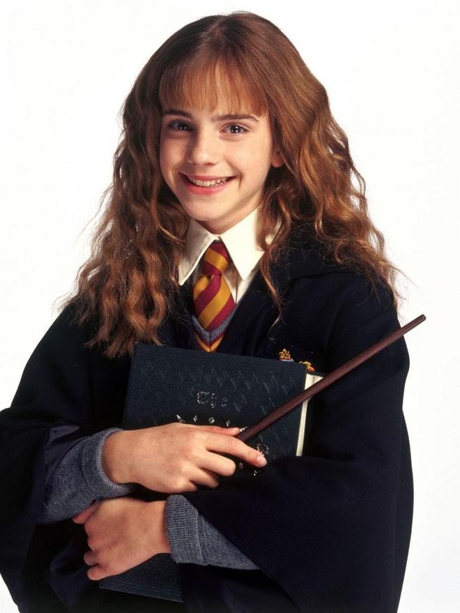 """19 năm sau cơn sốt toàn cầu Harry Potter: Người thành sao hạng A, kẻ cống hiến miệt mài để """"thoát xác"""" - ảnh 5"""