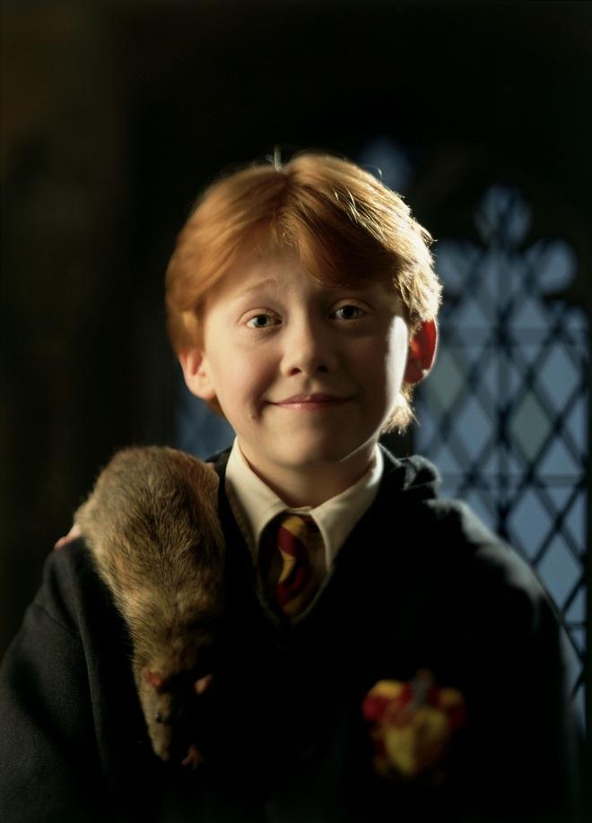 """19 năm sau cơn sốt toàn cầu Harry Potter: Người thành sao hạng A, kẻ cống hiến miệt mài để """"thoát xác"""" - ảnh 12"""