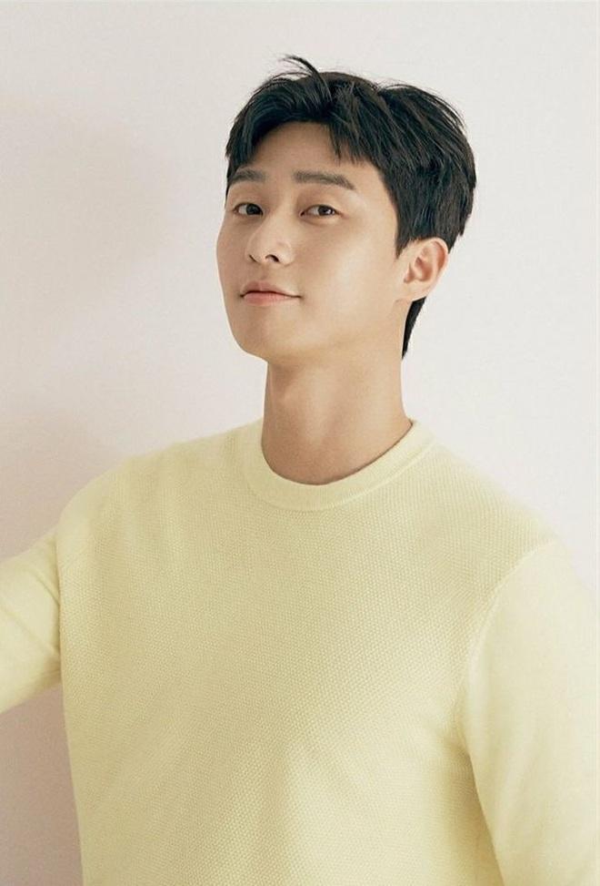 Park Seo Joon làm cameo ở Record Of Youth đáp lễ Park Bo Gum thời Tầng Lớp Itaewon đây mà! - ảnh 5