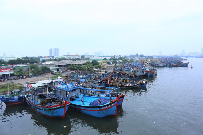 Hàng trăm tàu thuyền Đà Nẵng ngược dòng, nối đuôi nhau tiến vào sông Hàn tránh bão - ảnh 7
