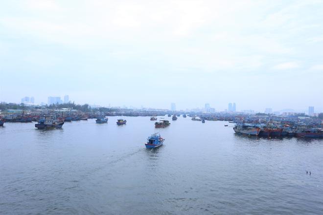 Hàng trăm tàu thuyền Đà Nẵng ngược dòng, nối đuôi nhau tiến vào sông Hàn tránh bão - ảnh 1