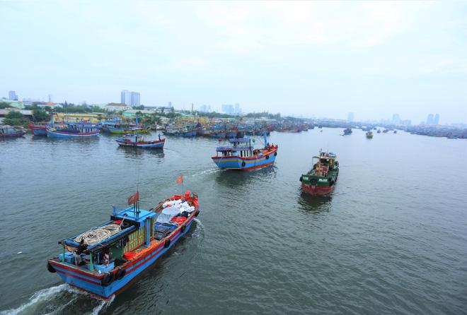 Hàng trăm tàu thuyền Đà Nẵng ngược dòng, nối đuôi nhau tiến vào sông Hàn tránh bão - ảnh 8