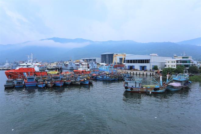 Hàng trăm tàu thuyền Đà Nẵng ngược dòng, nối đuôi nhau tiến vào sông Hàn tránh bão - ảnh 6