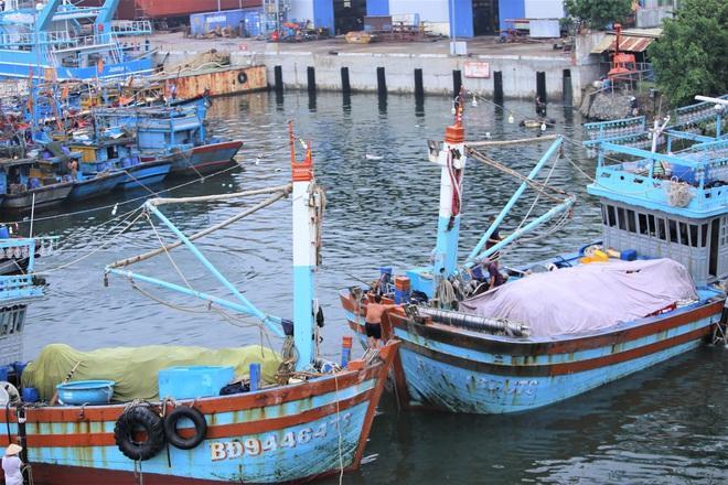 Hàng trăm tàu thuyền Đà Nẵng ngược dòng, nối đuôi nhau tiến vào sông Hàn tránh bão - ảnh 9