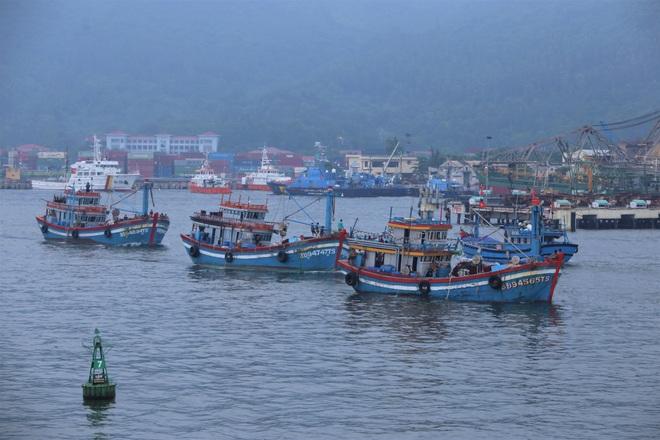 Hàng trăm tàu thuyền Đà Nẵng ngược dòng, nối đuôi nhau tiến vào sông Hàn tránh bão - ảnh 3