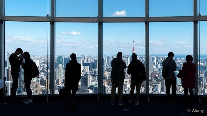 Một sự thật bất ngờ ở Nhật Bản: Đất nước xem lừa tình là một nghề hợp pháp, thậm chí còn trở thành nghệ thuật để giải thoát hôn nhân - ảnh 1