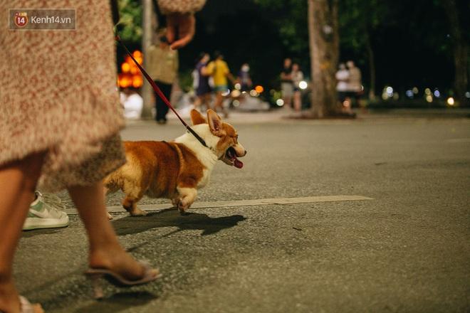 Ảnh: Trời vào Thu mát mẻ, người Hà Nội vui vẻ dạo chơi sau khi phố đi bộ hoạt động trở lại - ảnh 21