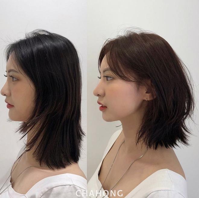 """12 gợi ý làm tóc vừa xinh vừa sang cứu vãn mái tóc """"không ra thể thống"""" - ảnh 9"""