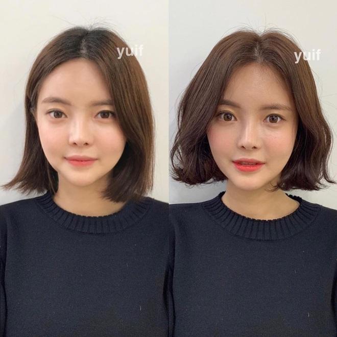 """12 gợi ý làm tóc vừa xinh vừa sang cứu vãn mái tóc """"không ra thể thống"""" - ảnh 5"""