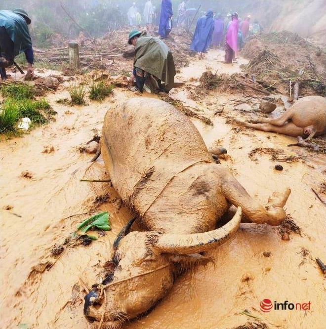 Mưa lớn, sạt lở đất, bản làng biên giới Nghệ An bị cô lập, 1 người tử vong - ảnh 3