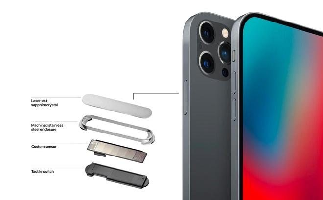 Vì sao thêm Touch ID trên iPhone 12 sẽ là một nước đi không thể chê vào đâu được của Apple - Ảnh 1.