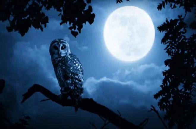 Đêm Halloween thế kỷ: Lần đầu tiên sau 76 năm, trăng xanh sẽ xuất hiện vào đúng Lễ hội Ma - ảnh 1