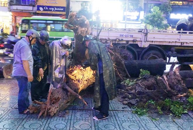 Gia cảnh đáng thương của nạn nhân bị cây xanh đè tử vong ở Sài Gòn: 2 vợ chồng cùng thất nghiệp do Covid-19, đứa con đầu chưa đầy 4 tuổi - ảnh 4
