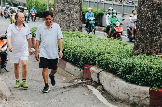 Sau vụ cây xanh bật gốc đè chết người: Vẫn còn nhiều cây đã già cỗi có rễ lộ thiên, nhánh vươn ra mặt đường ở Sài Gòn - ảnh 16