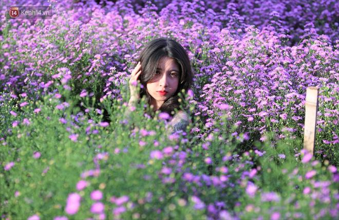 Dân tình chen chúc sống ảo tại vườn hoa thạch thảo đẹp lịm tim lần đầu được trồng ở Đà Nẵng - ảnh 15