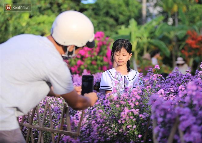 Dân tình chen chúc sống ảo tại vườn hoa thạch thảo đẹp lịm tim lần đầu được trồng ở Đà Nẵng - ảnh 14