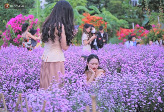 Dân tình chen chúc sống ảo tại vườn hoa thạch thảo đẹp lịm tim lần đầu được trồng ở Đà Nẵng - ảnh 5