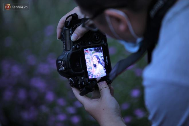 Dân tình chen chúc sống ảo tại vườn hoa thạch thảo đẹp lịm tim lần đầu được trồng ở Đà Nẵng - ảnh 13