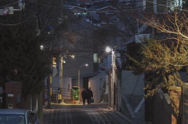 Bộ ảnh xem xong trào dâng thương nhớ Seoul: Đã đến mùa nơi này đẹp nhất, nhưng năm nay ta không thể gặp nhau - Ảnh 12.